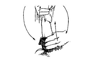 receptoriai ant varpos