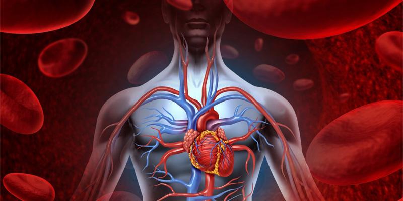 erekcija su ateroskleroze video kaip padidinti varpos ilgi